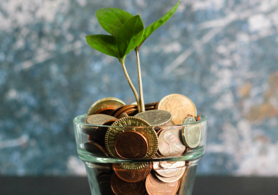 penny jar with plant growing