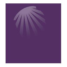 BIAID logo.