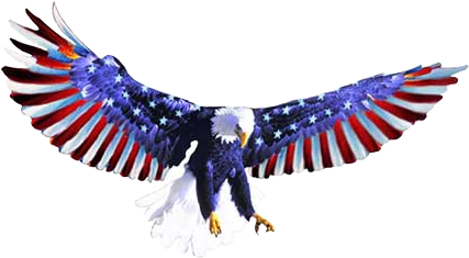 Freedom Shuttle logo.